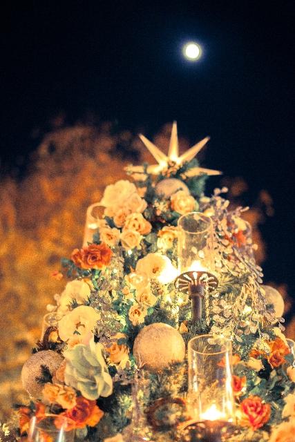 クリスマスツリーと満月