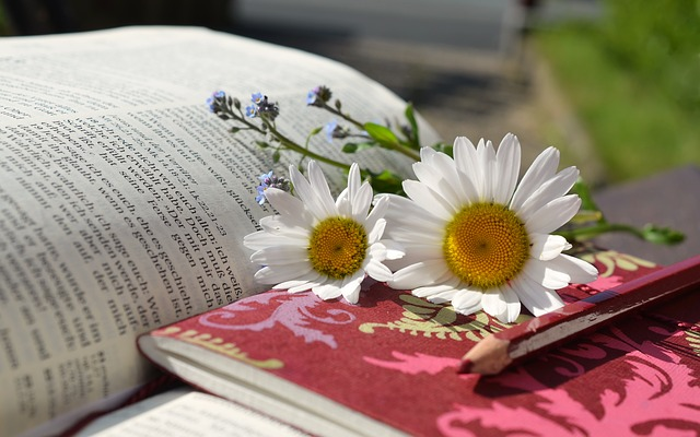 本と白い花