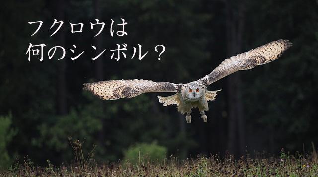 bird-3652358_640-2